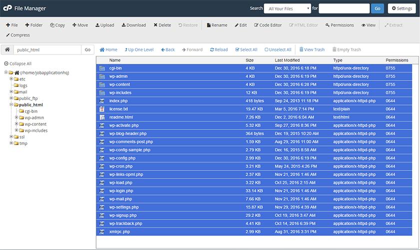 delete wordpress files cpanel