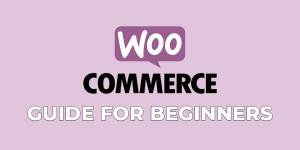 woocommerce guide for beginners